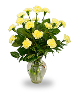 Eighteen carnations in a clear vase